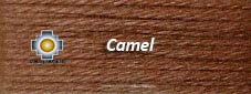 Camel Alpaca Color