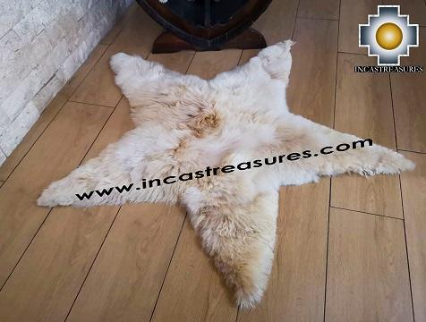 Alpaca stuffed Alpaca Sugar