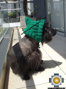 Alpaca Hat for Dogs Puppy Elf - Product id: dog-clothing-14-04 Photo01