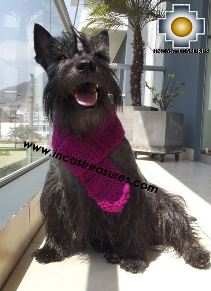 Alpaca Scarf for dogs Alqu - Product id: dog-clothing-15-01 Photo01