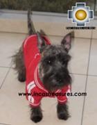 dog clothing jacket peru - Product id: dog-clothing-11-04 Photo03