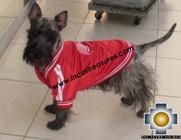 dog clothing jacket peru - Product id: dog-clothing-11-04 Photo02