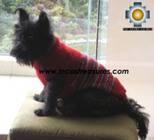 Dog Turtle neck sweater red - Product id: dog-clothing-10-07 Photo04