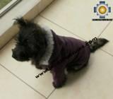Dog Jacket with Hood ROBIN - Product id: dog-clothing-10-01 Photo03