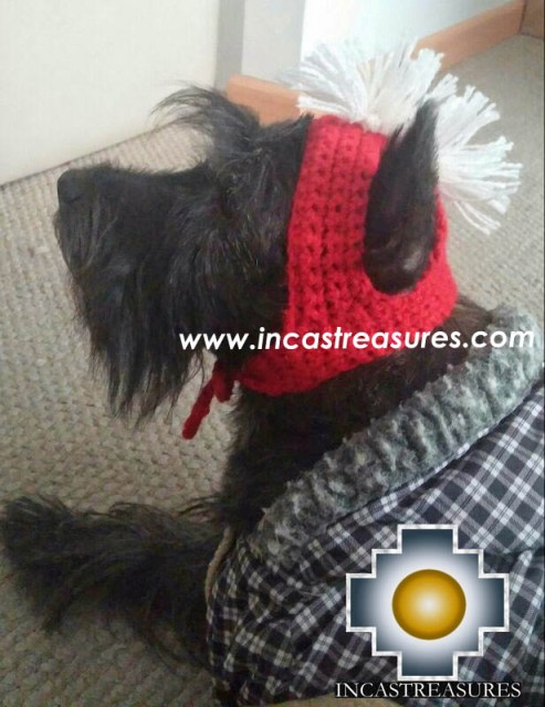 Alpaca Hat for Dogs spartan dog - Product id: dog-clothing-14-01
