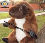 Alpaca Stuffed Animal -justin-beaver - Product id: TOYS12-02 Photo03