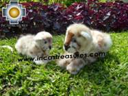 Beautiful alpaca stuffed animal cheetah-cub - Product id: TOYS08-50 Photo02