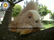 Alpaca Stuffed Animal Squirrel Nuez - Product id: TOYS08-57 Photo02