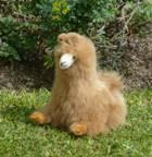alpaca stuffed animal chevere , photo 07
