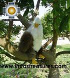 Beautiful Bald Eagle - YUKEN - Product id: TOYS08-21 Photo03
