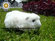 Adorable Stuffed Animal  - Fantastic Guinea Pig - Product id: TOYS08-54 Photo01
