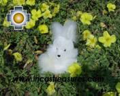 Cute White Rabbit - SPOUNGE - Product id: TOYS08-22 Photo04