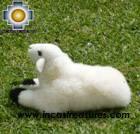 Baby Alpaca Cute Little Sheep - Dolly , photo 05