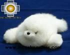 Adorable White Seal - Gotita , photo 01